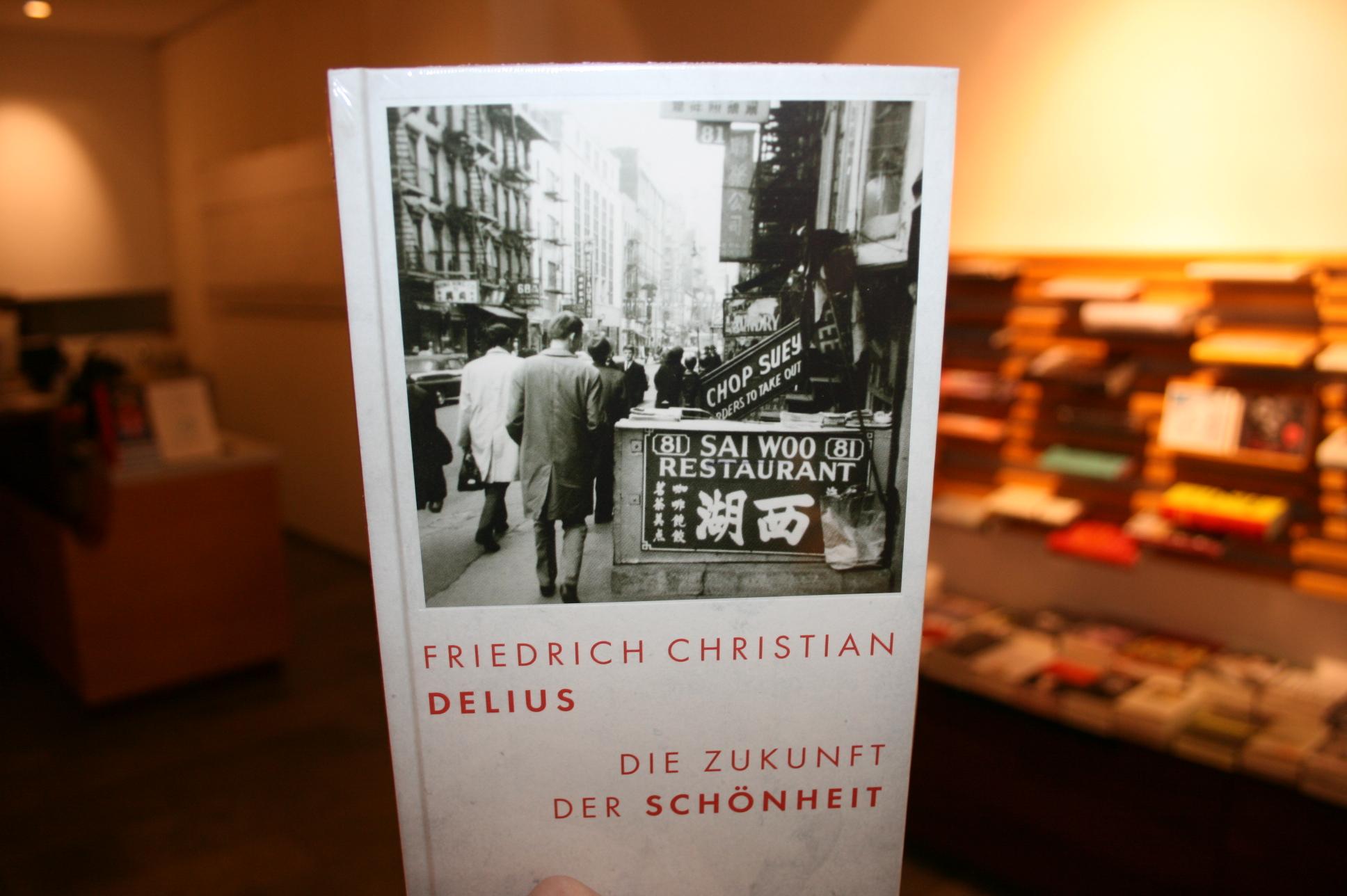 Friedrich Christan Delius, Zukunft der Schönheit
